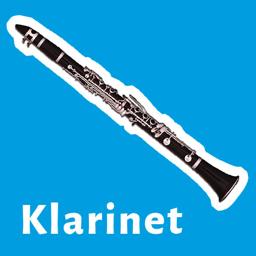 demonstratie blaasinstrument muziekles bocholtz zuid limburg klarinet